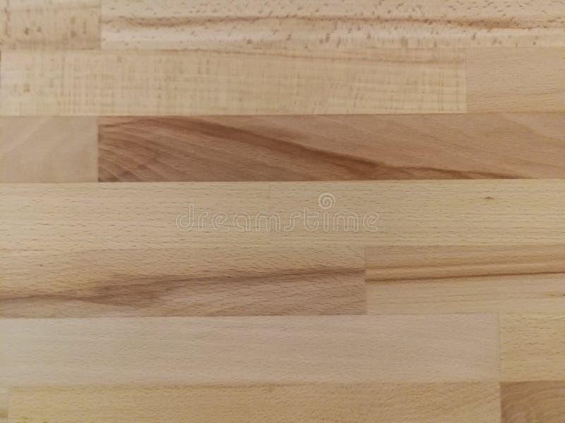 Wood paneltallskog arkivfoto