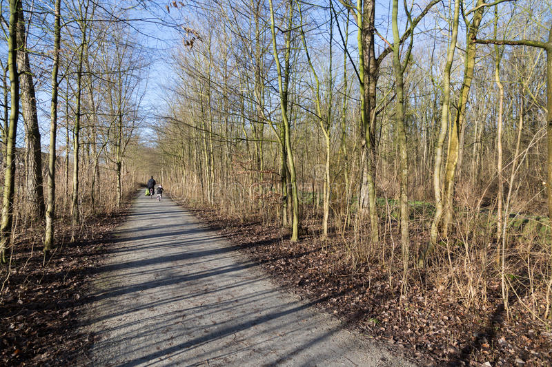 Download Wood Path With Cyclists In Early Spring Stock Photos - Image: 29015523