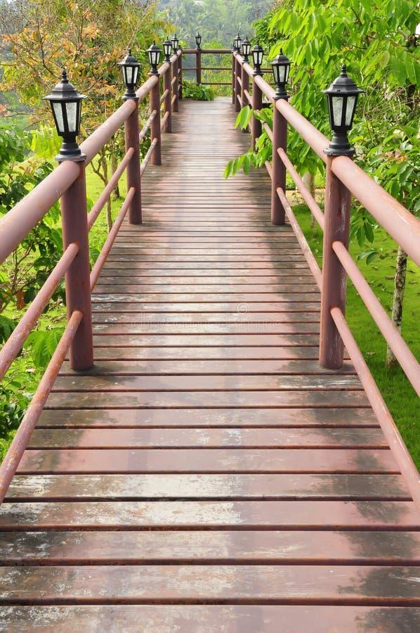 Wood path over garden