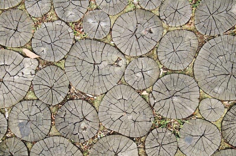 Wood pathway. Detail of wood walking pathway royalty free stock image