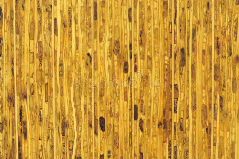 Download Wood Pattern Stock Image - Image: 14321171