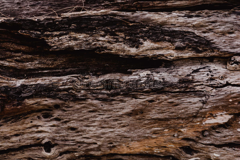 wood pattern and background royalty free stock images