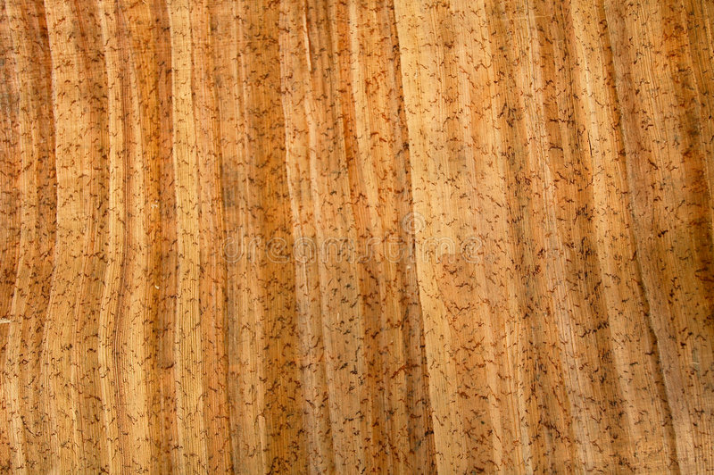 Wood patterned paper 7 royalty free stock photo
