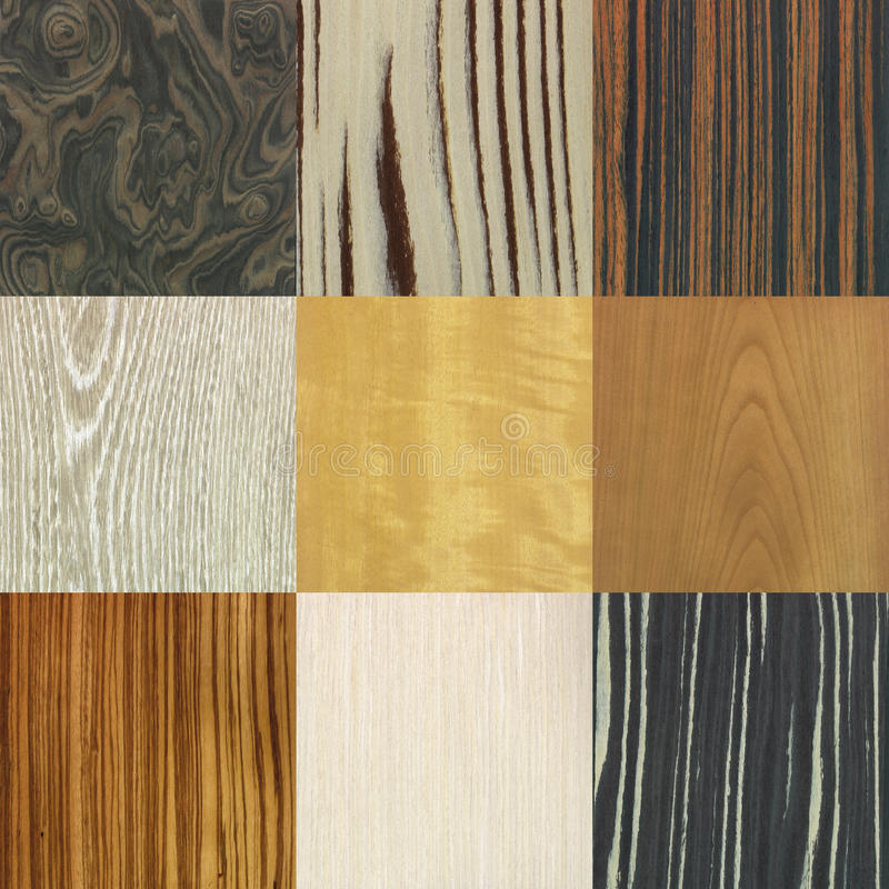 Wood patterns collage. Collage of nine valuable wood texture backgrounds royalty free stock photo