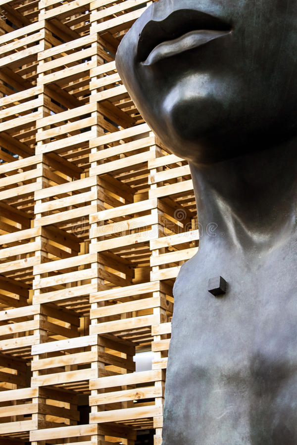 Wood pavillion arkivfoton