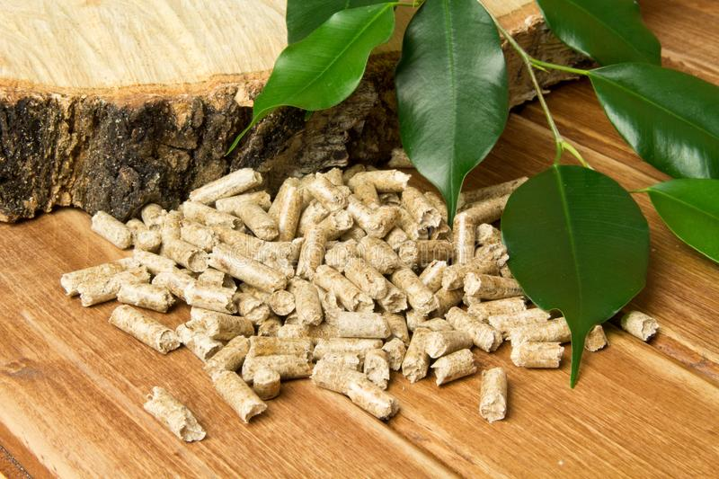 Wood pellets, birch and twig with leaves. Biomass Pellets- cheap energy. The concept of biofuel production. Alternative background biological burn central chip royalty free stock images