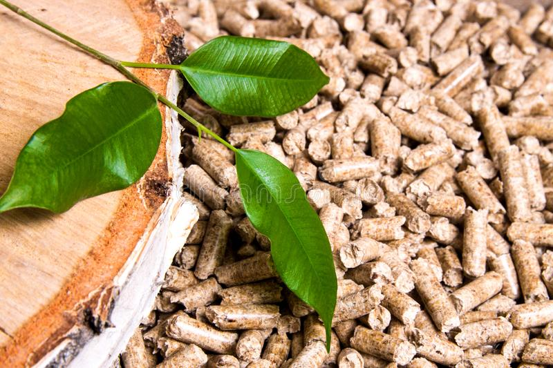 Wood pellets, birch and twig with leaves. Biomass Pellets- cheap energy. The concept of biofuel production. Alternative, background, biological, burn, central stock photo