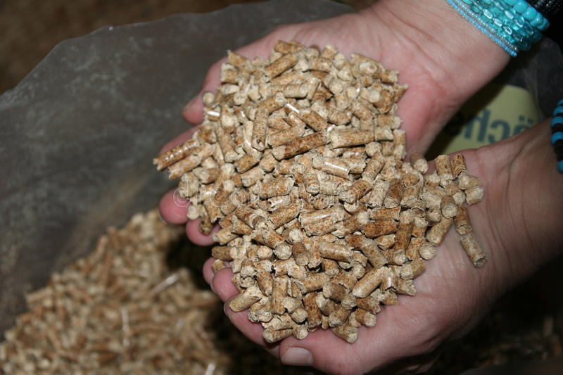 Wood pellets royalty free stock image