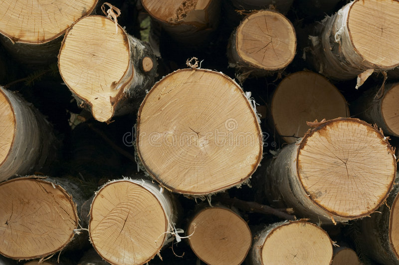 Download Wood pile stock image. Image of timber, wood, build, firewood - 1061941