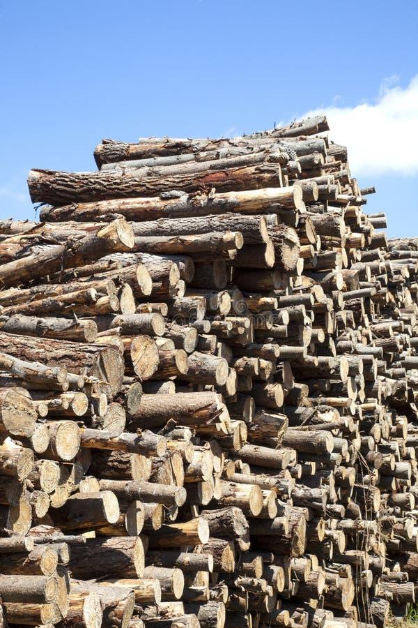 Download Wood piled stock image. Image of wood, firewood, lumber - 26453645