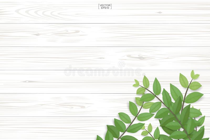 Wood plank pattern and texture with green leaves for natural background. royalty free illustration