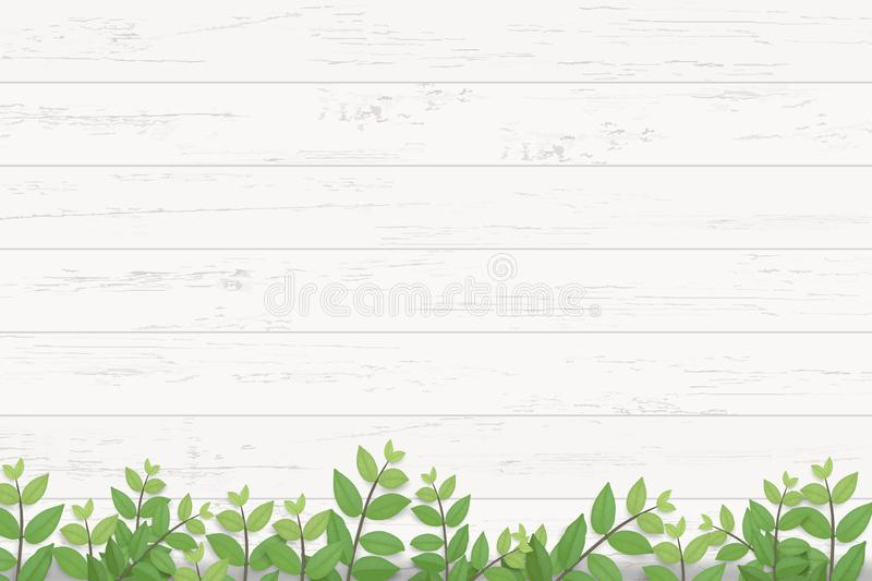 Wood plank texture background with green leaves. Vector illustration. Wood plank texture background with green leaves. Realistic vector illustration royalty free illustration
