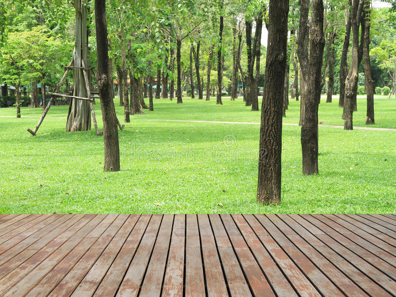 Wood plankagolv och gräsplanträdgård arkivbilder