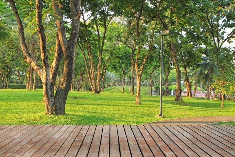 Wood plankagolv och gräsplanträdgård arkivfoto