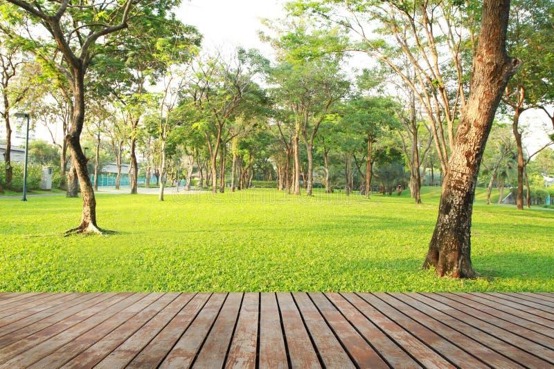 Wood plankagolv och gräsplanträdgård arkivbild