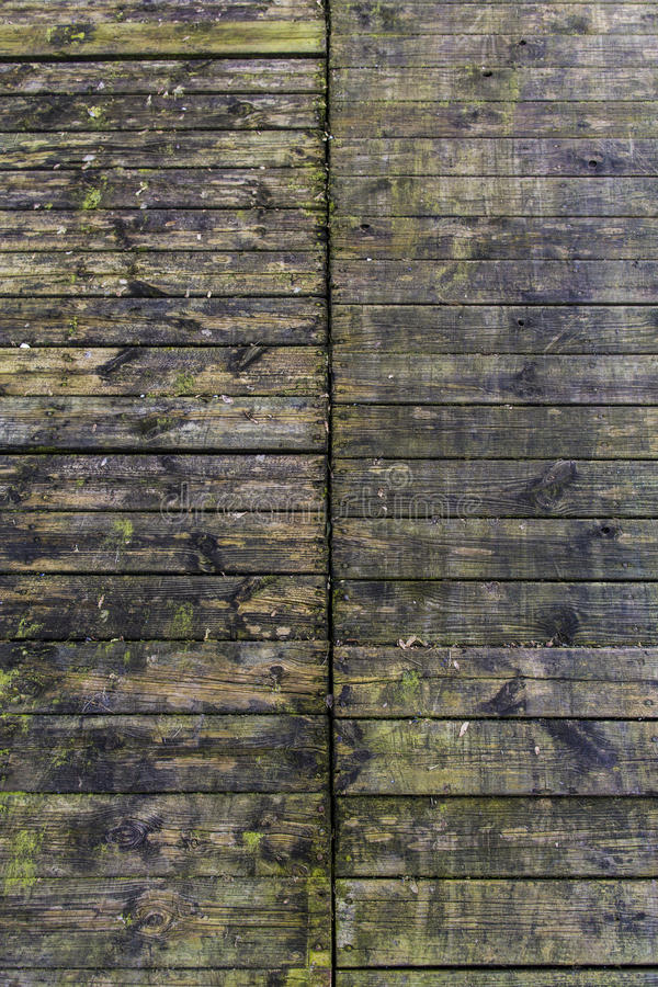 Wood planks. Old wood planks with moss royalty free stock photos