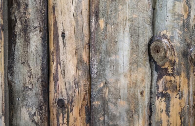 Wood planks texture background. Surface of old wood with natural color stock photography