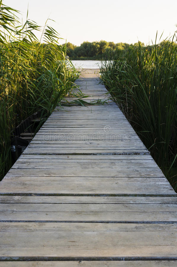 Wood pontoon royalty free stock image