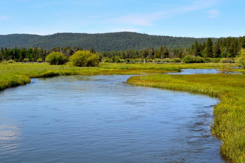 The Wood river head waters comes up in Jackson Kimball State Park, Oregon and flows down to Agency Lake. It is well known for stock photography