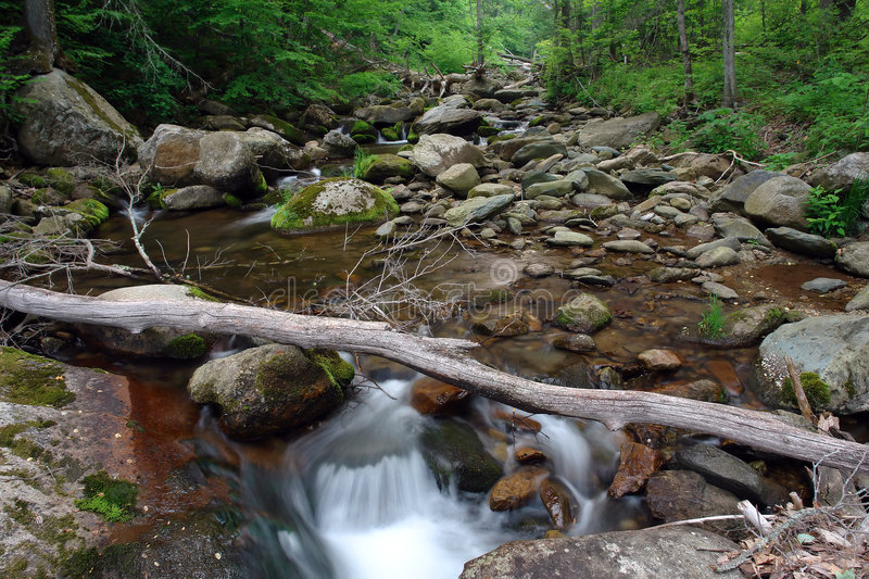 Wood river in Shenandoah National park royalty free stock photo