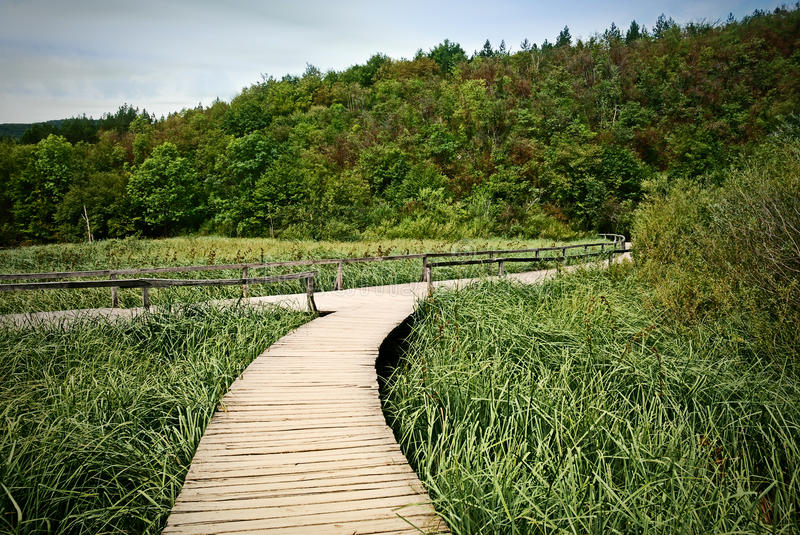Wood road in the Plitvice lake royalty free stock photography