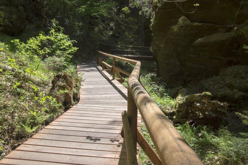 Wood and rock landscape in Bohemian Switzerland, Kammintz George rocky ravine, Saxon Switzerland National Park stock photos