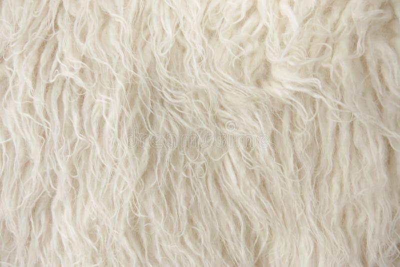 Wood Rug Fiber Close Up stock image
