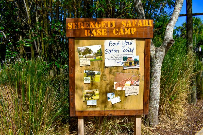 Wood Safari Sign on forest background at Bush Gardens Tampa Bay royalty free stock image