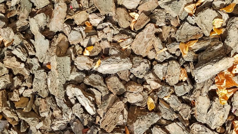 Wood Sawdust For The Garden. Texture of a tree bark lying on the ground. Background from a tree bark. Decorative bark stock photography