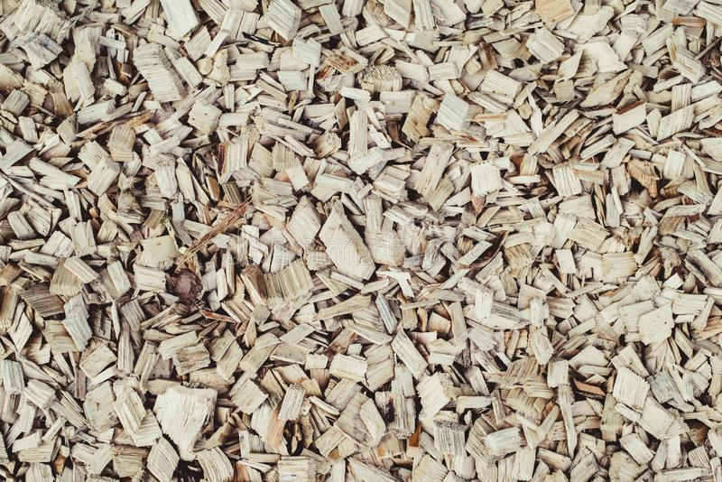 Wood sawdust background. Top view. stock image