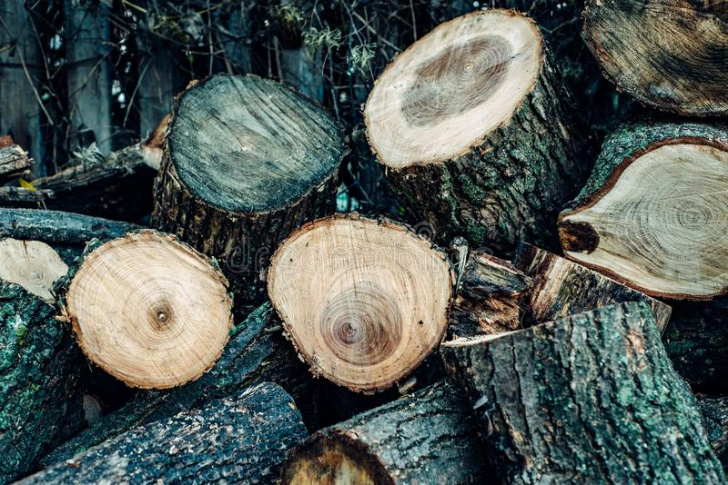 Wood is sawn into many small pieces. The wood is sawn into many small pieces, lying a heap one on one under the fence royalty free stock image
