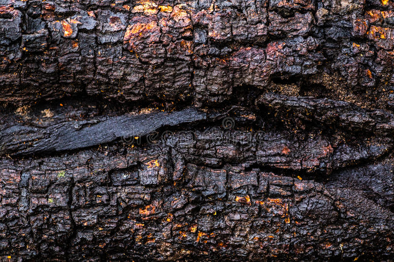 Wood scorched by fire royalty free stock photo