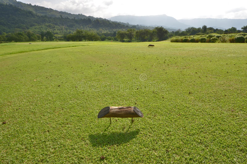 Wood sign to T off hit in green grass court of golf field royalty free stock photography