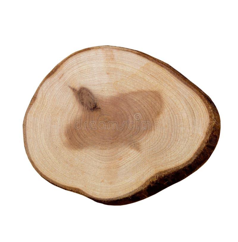 Wood Slice On A White Background Royalty Free Stock Photo