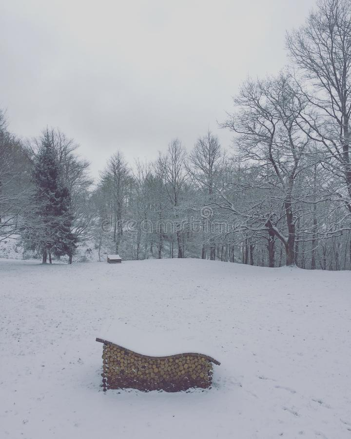 Download Wood on the snow stock photo. Image of italy, brands - 94579150
