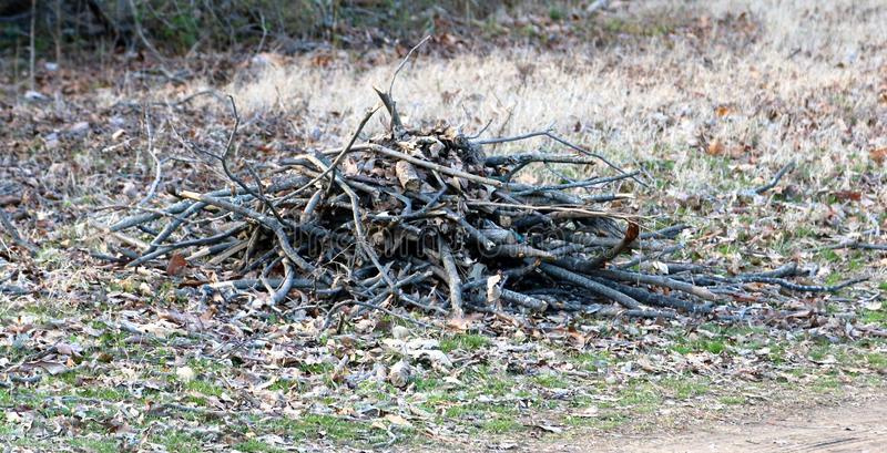 Wood stacked in a pile for a campfire. Wood twigs, brush, kindling and tree brush arranged in a pile for a campfire stock photos