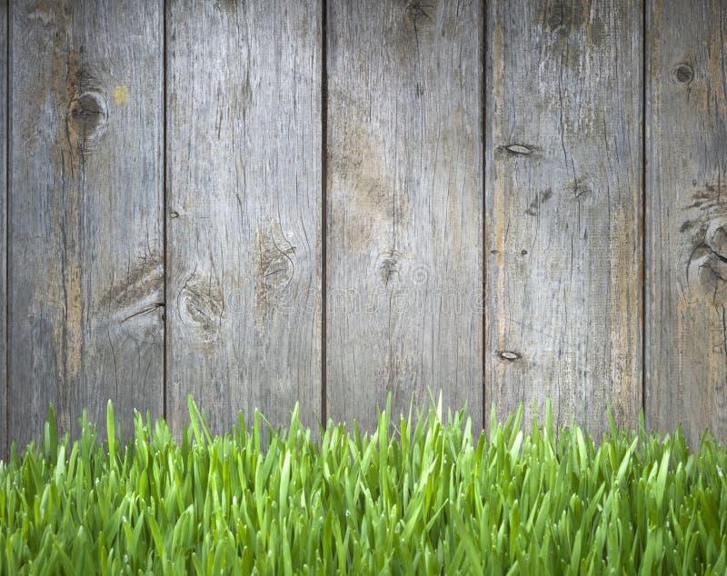 Wood staket Background för gräs fotografering för bildbyråer
