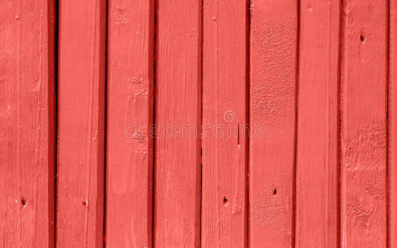 Wood staket Background för sjaskig smal planka Ljus moderiktig uppehälle Coral Color Yttersidatextur med detaljer spikar hål royaltyfria foton