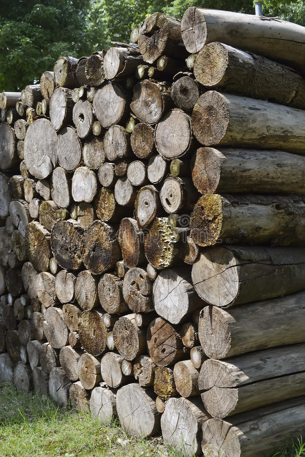 Wood stapel royaltyfri fotografi