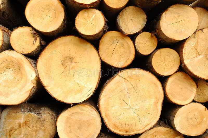 Wood Stores Stock Photography