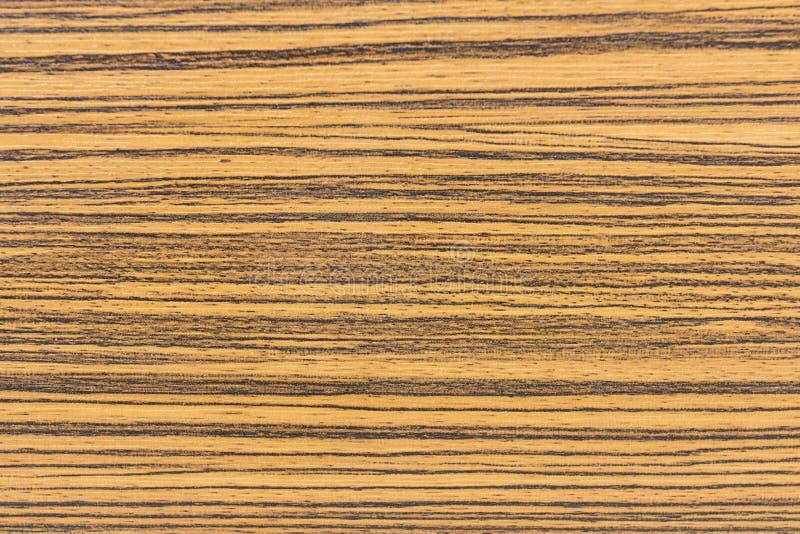 Wood stylebackground arkivbild