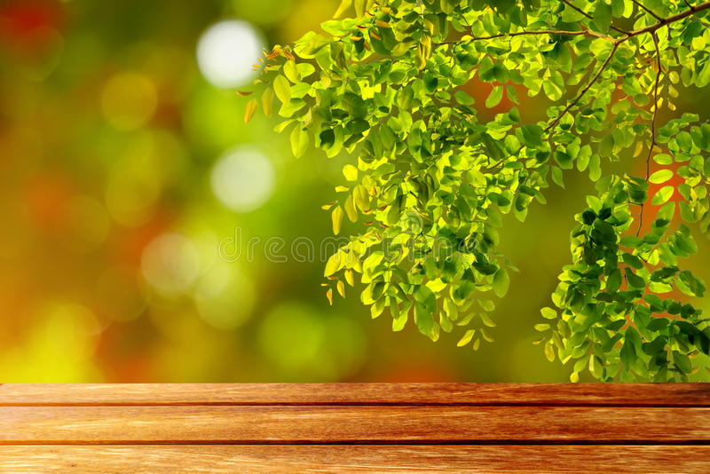 Wood table empty space and nature green leaves on abstract background. stock image