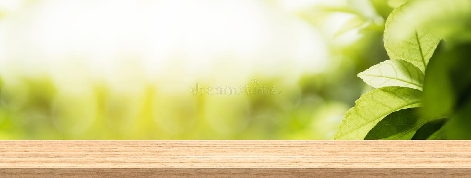 Wood table top and blur natural background in garden for product and display montage banner size. stock image