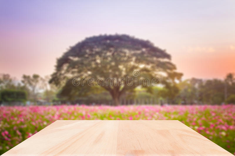 Wood table top on blured flower garden background. Wood table top on blured flower garden background : Can use for montage or display your product royalty free stock photo