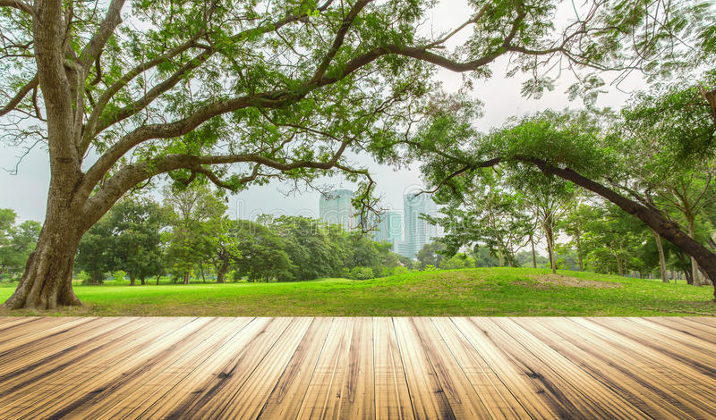 Wood table top on garden in city background royalty free stock photography