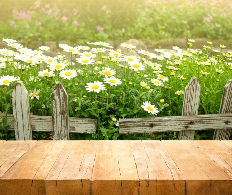 Wood table top on white flower with fence in garden background royalty free stock images