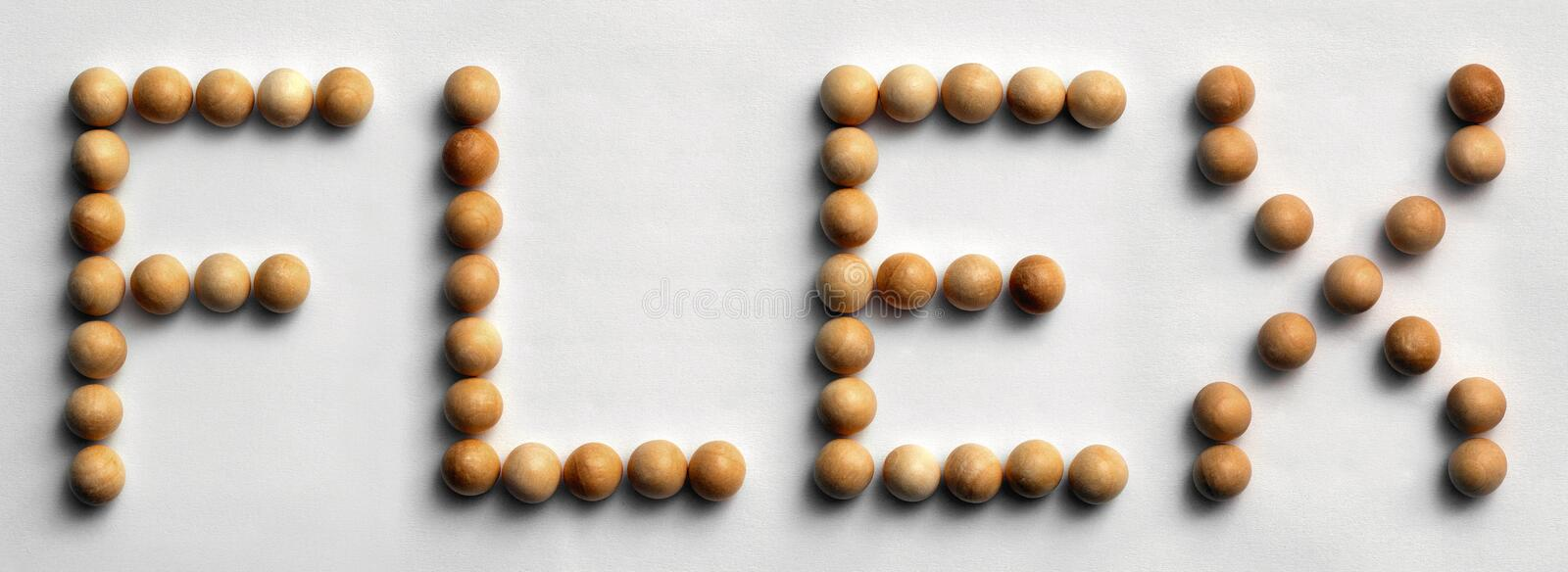 Wood Tack Word Art `Flex` royalty free stock images