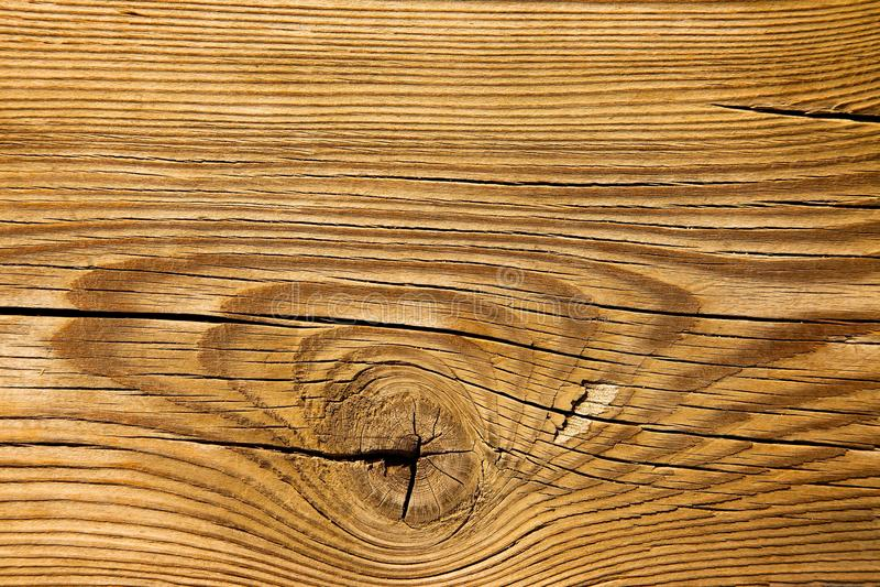Wood textur royaltyfri bild