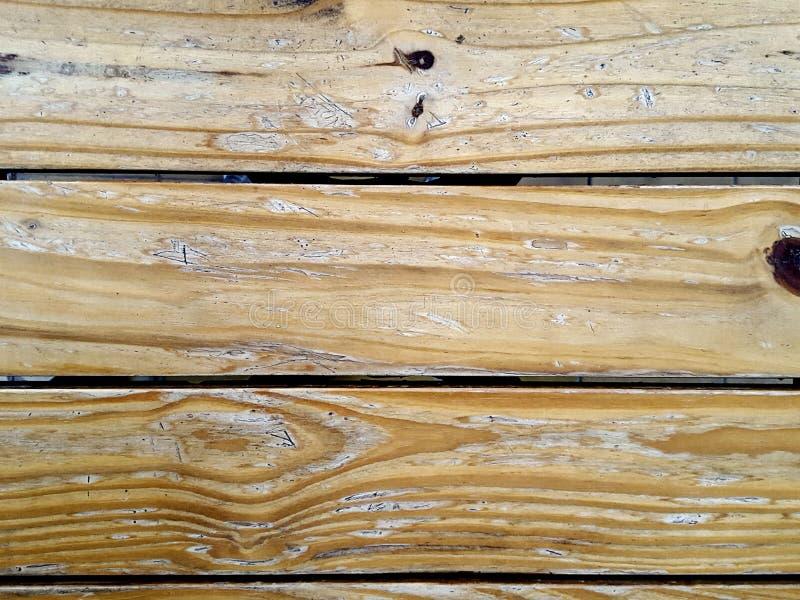 Wood textur - ek - upplyst - ljus - brunt arkivfoton