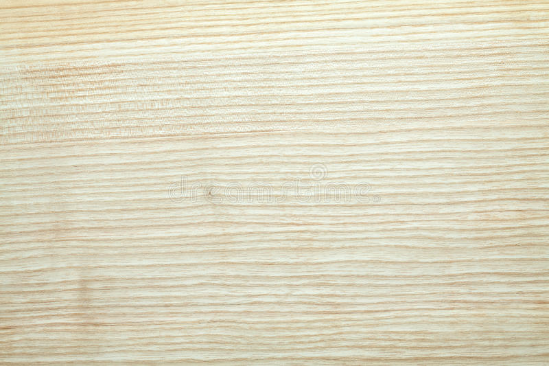 Wood textur för aska; arkivbilder